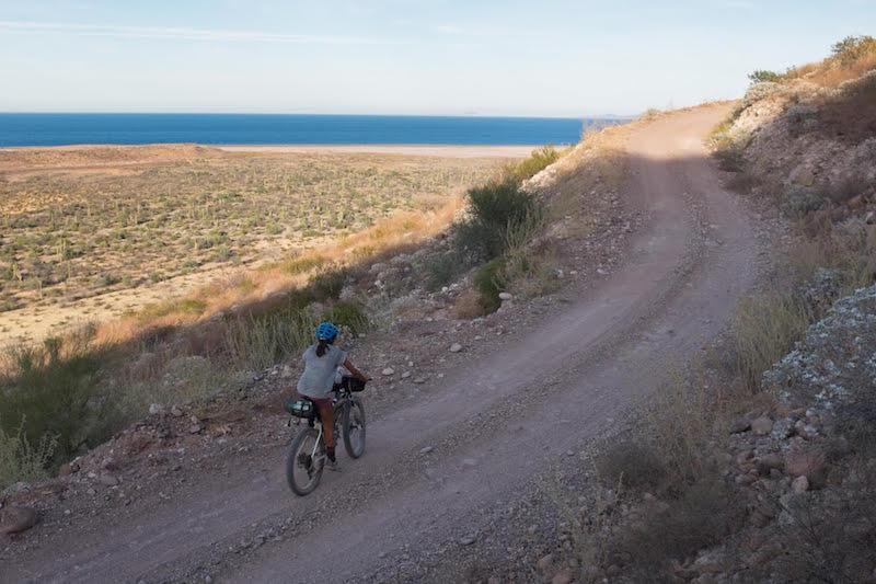 lael riding